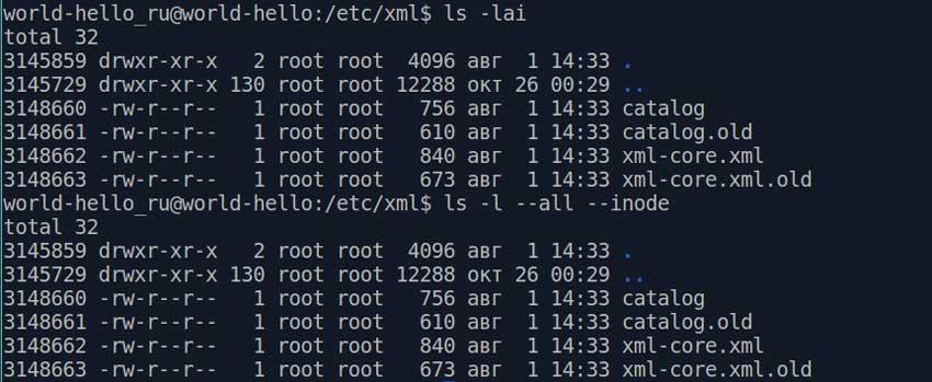 Пример вызова команды ls с длинными и короткими ключами