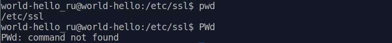 Linux учитывает регистр, на примере pwd и PWd.